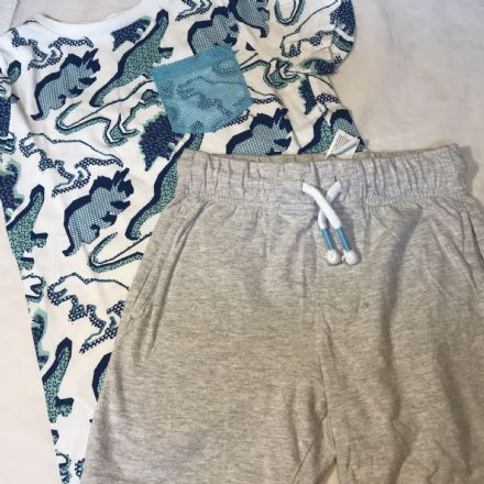 3-4 Year Light Grey Shorts and Tee
